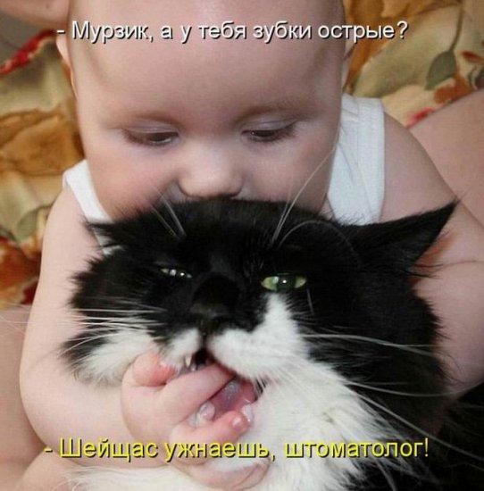 http://sa.uploads.ru/29eXG.jpg