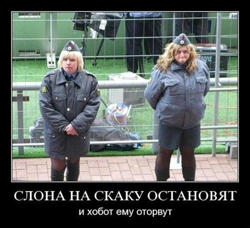 http://sa.uploads.ru/3ExNW.jpg
