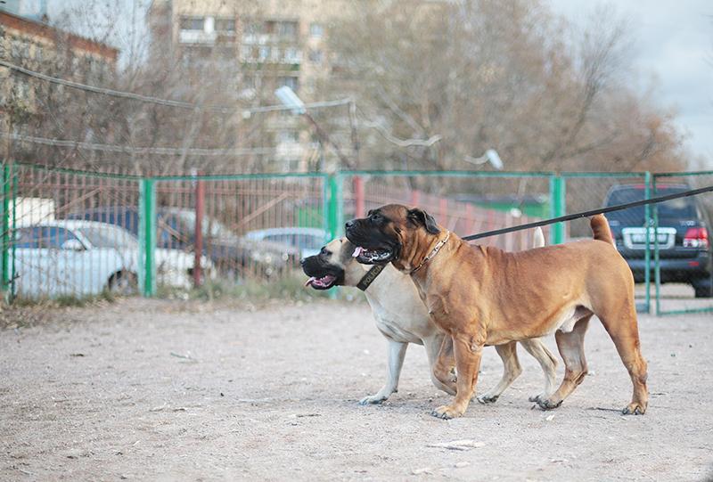 http://sa.uploads.ru/5hWg0.jpg