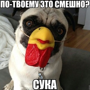 http://sa.uploads.ru/6jGCq.jpg