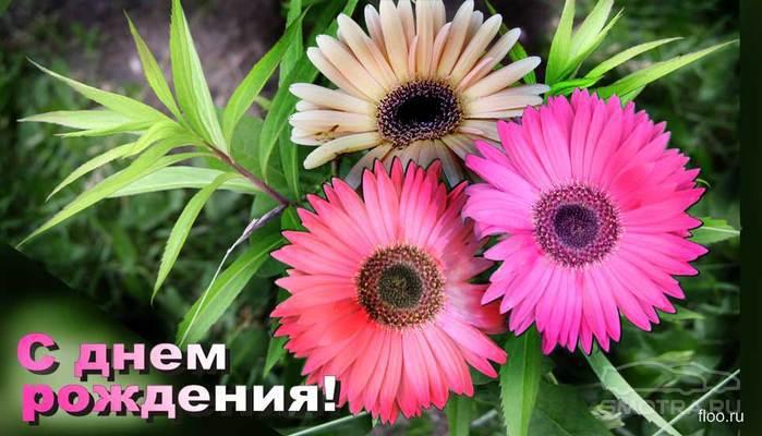 http://sa.uploads.ru/9s2ah.jpg
