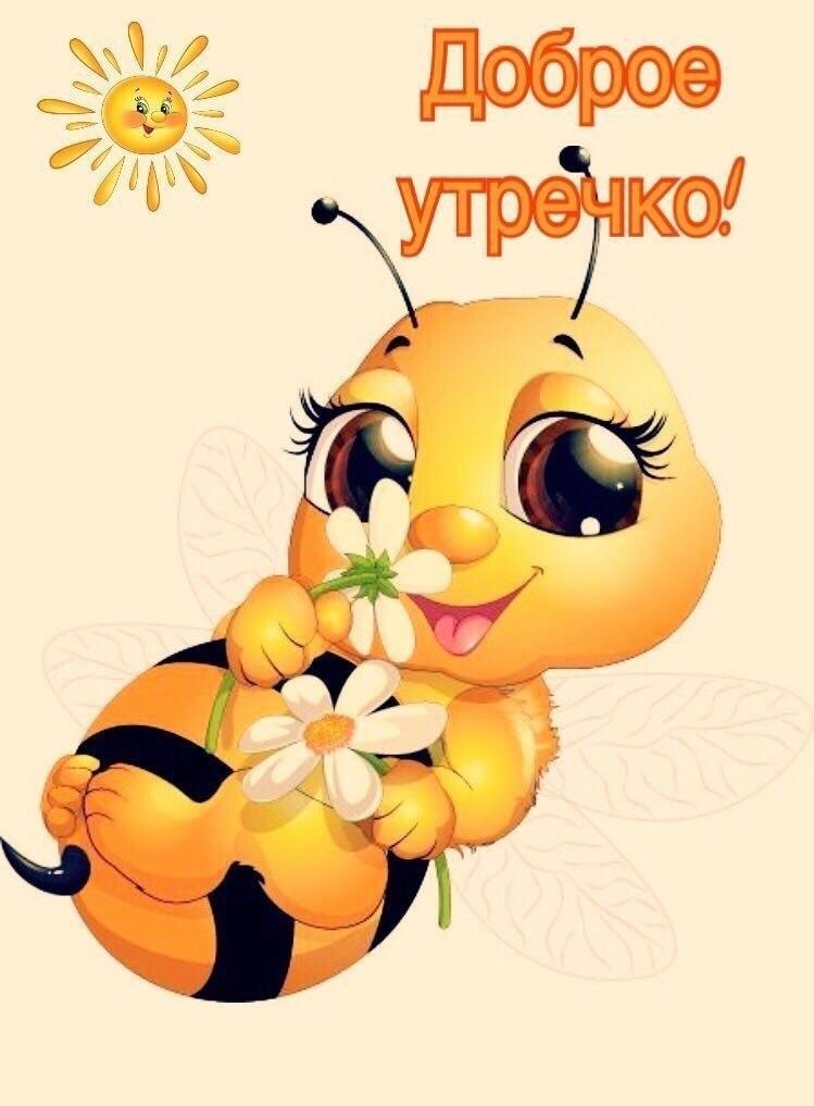 http://sa.uploads.ru/Bs4Qn.jpg