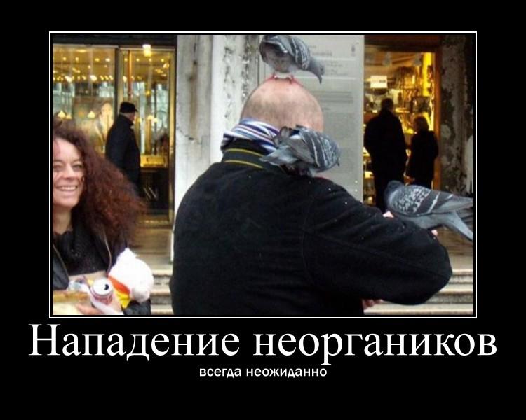 http://sa.uploads.ru/DIcPM.jpg
