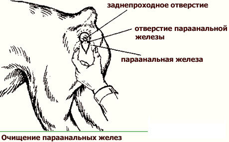 http://sa.uploads.ru/Eql8Q.jpg