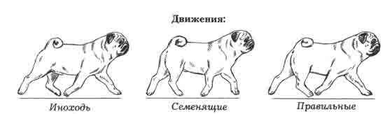 http://sa.uploads.ru/JkTFl.jpg