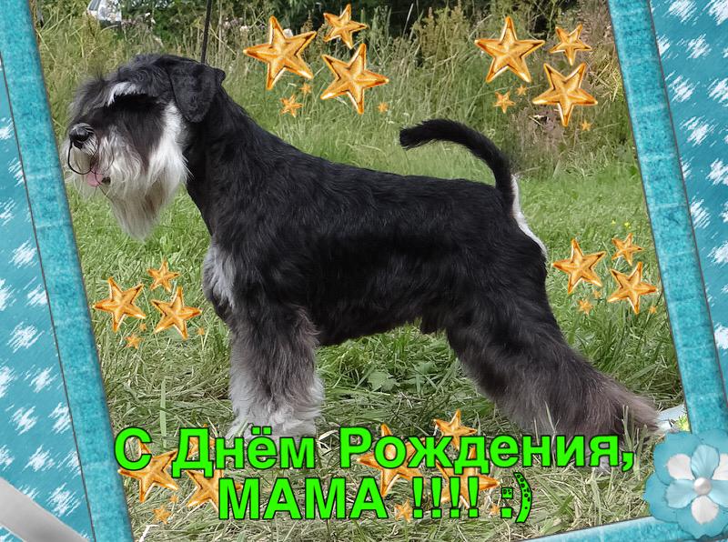 http://sa.uploads.ru/M8BNz.png