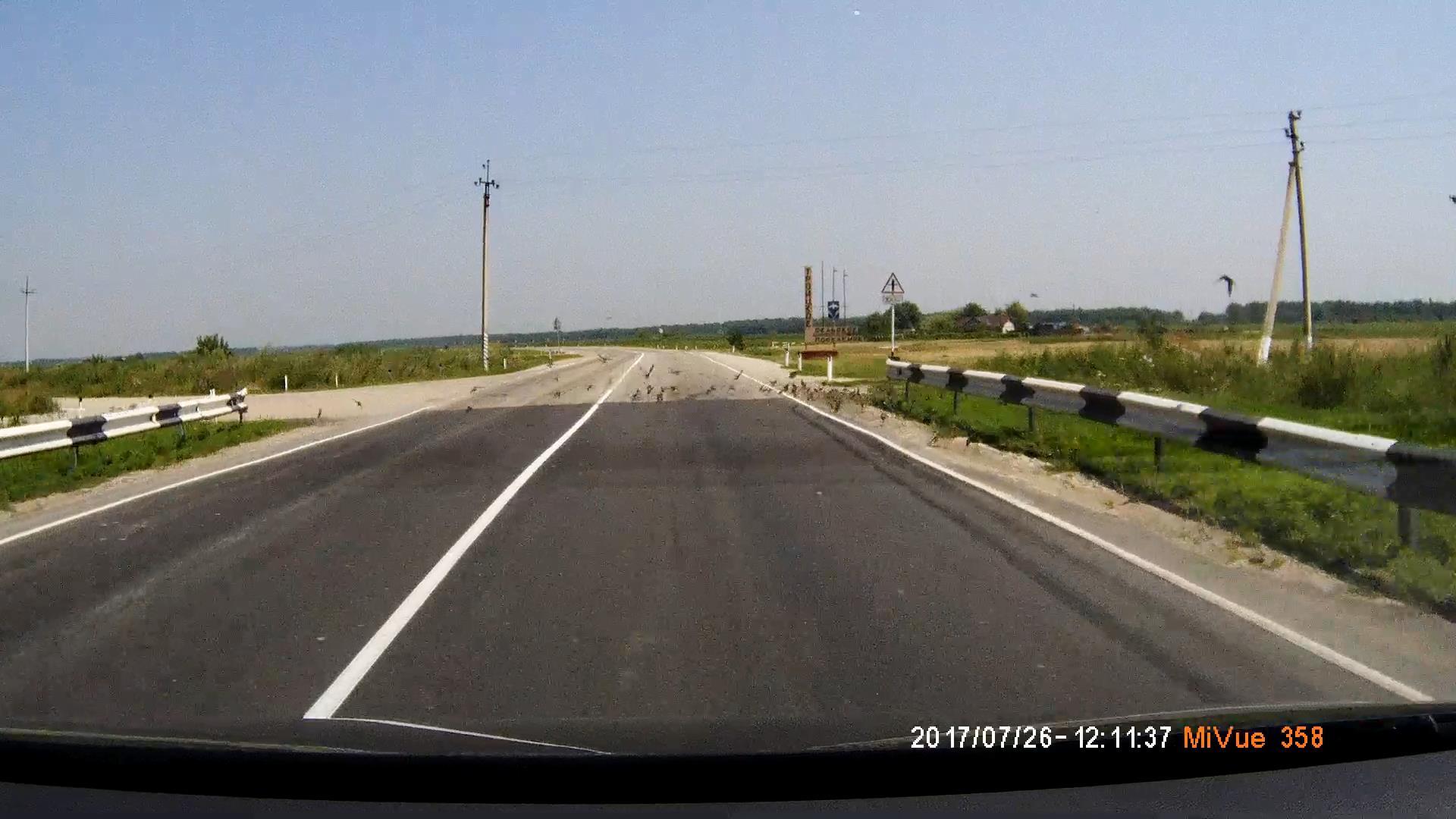 http://sa.uploads.ru/MU1Y2.jpg