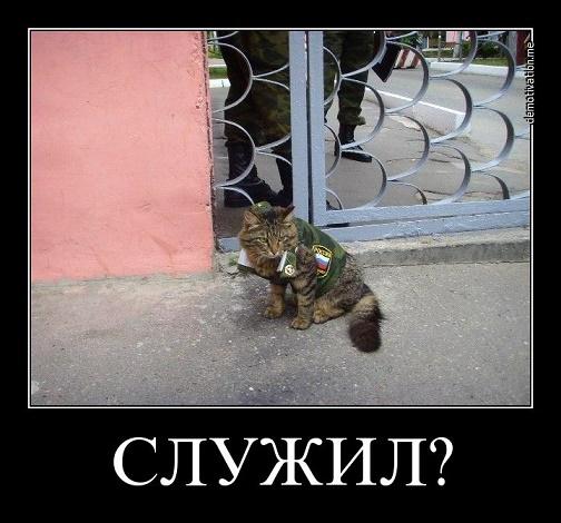 http://sa.uploads.ru/NUkcQ.jpg
