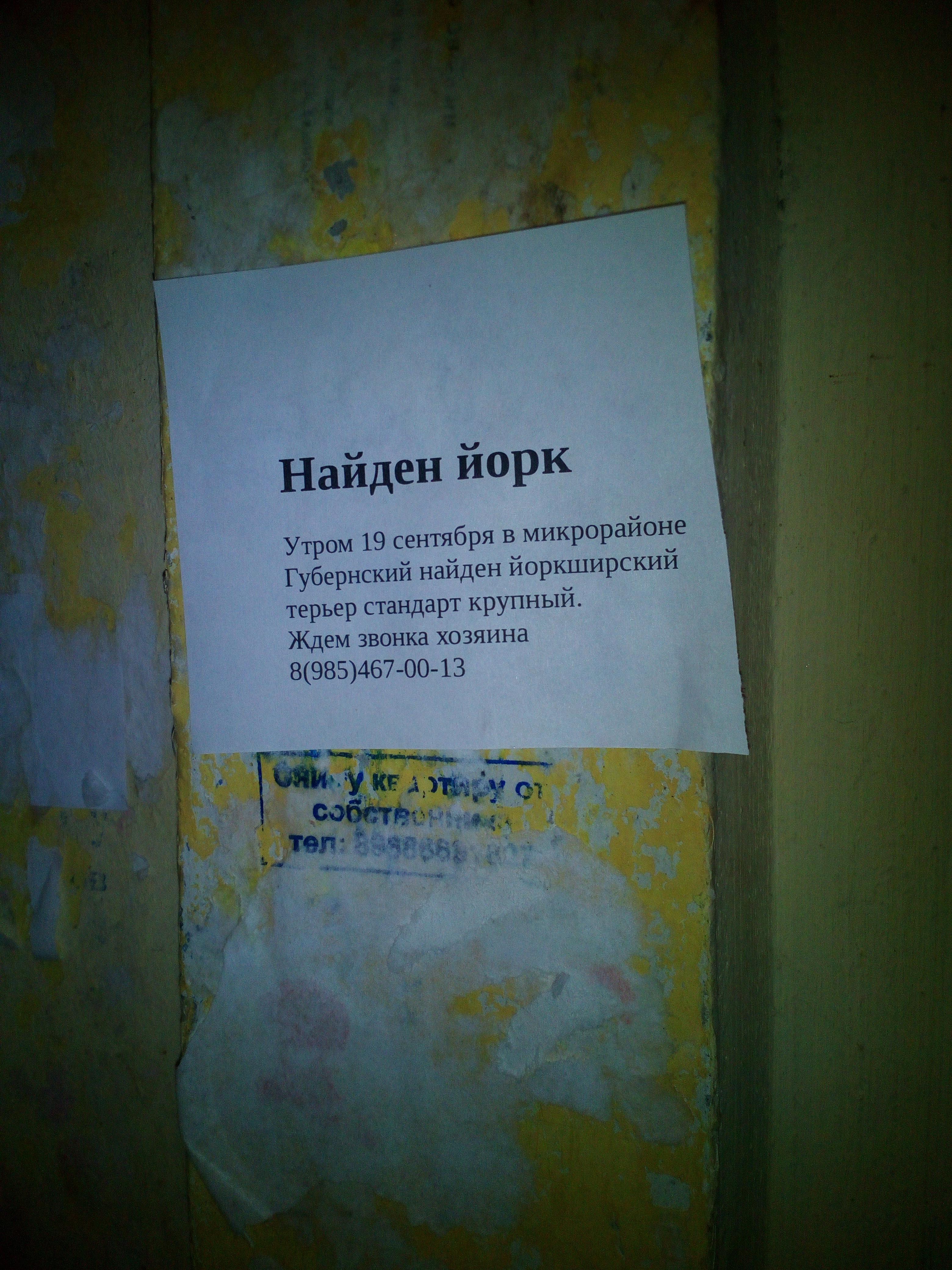 http://sa.uploads.ru/QWlup.jpg