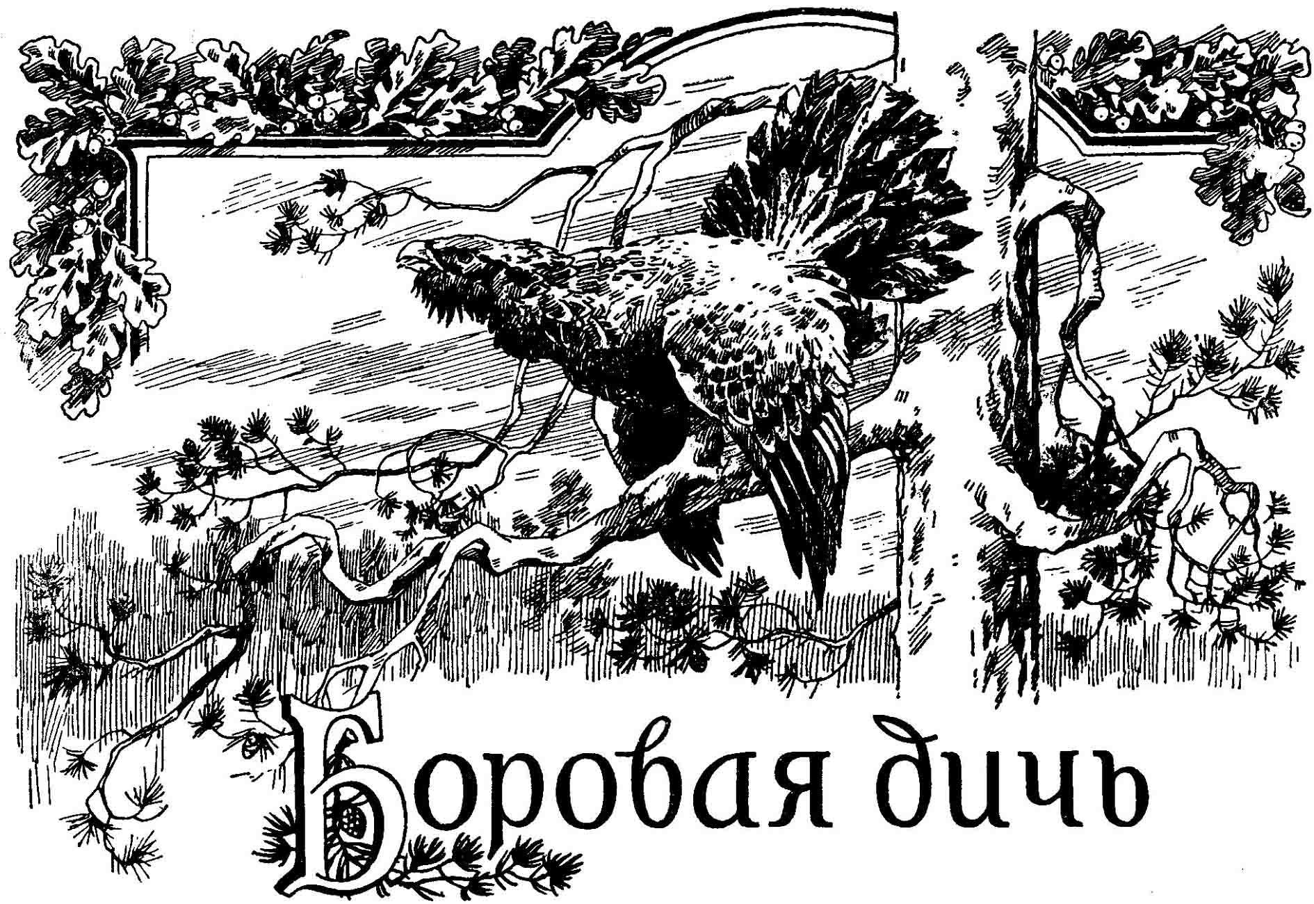 http://sa.uploads.ru/VYlnG.jpg
