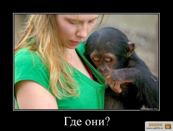 http://sa.uploads.ru/WOd1u.jpg