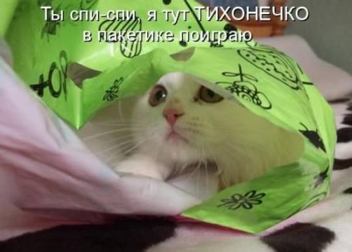 http://sa.uploads.ru/WeYhx.jpg