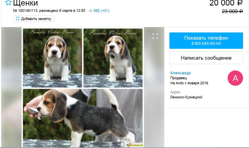 http://sa.uploads.ru/XcsVq.png