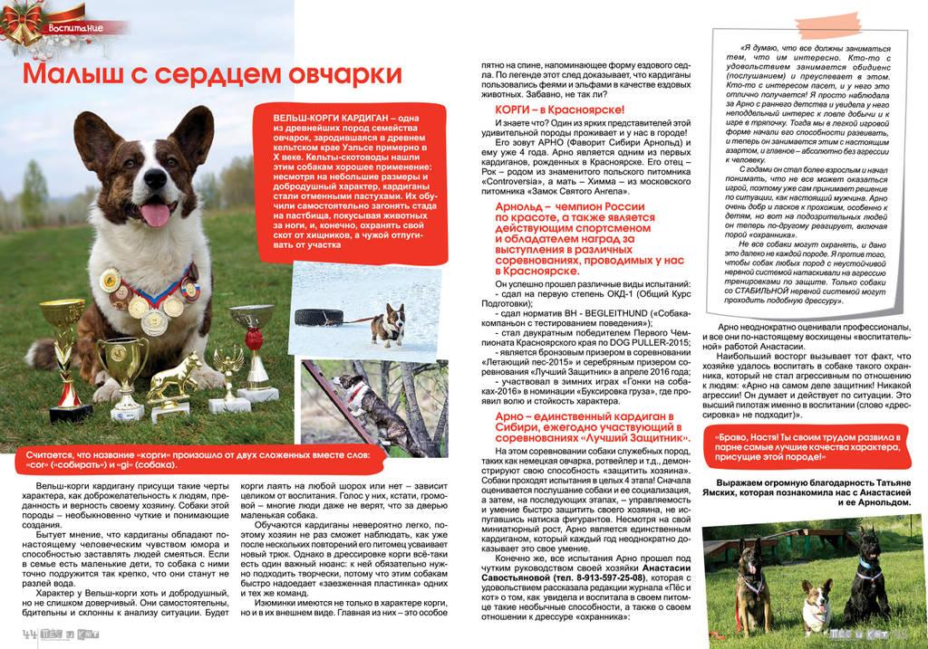 http://sa.uploads.ru/Xuw4B.jpg