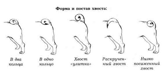 http://sa.uploads.ru/Xz0Dq.jpg