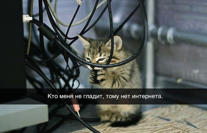 http://sa.uploads.ru/Yf6Vl.jpg