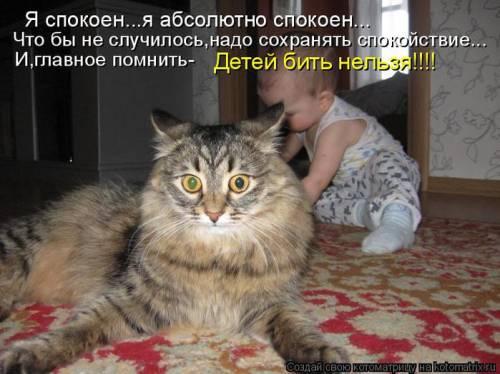 http://sa.uploads.ru/ZHavI.jpg