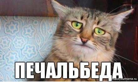 http://sa.uploads.ru/a9omg.jpg