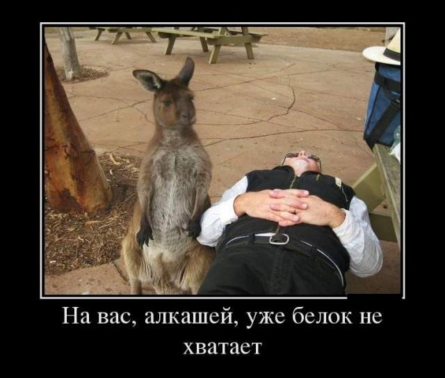 http://sa.uploads.ru/ayJXk.jpg
