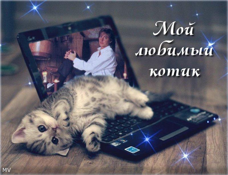 http://sa.uploads.ru/bEe79.jpg