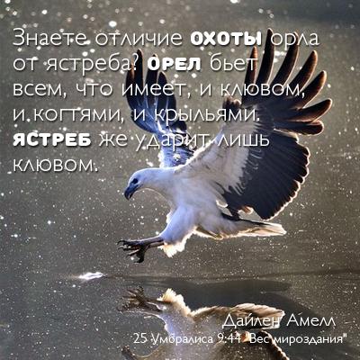 http://sa.uploads.ru/dRHN4.jpg