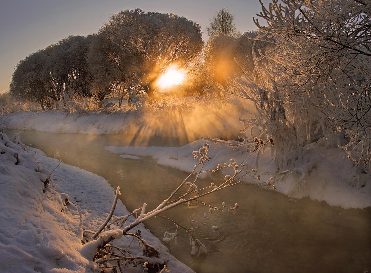 Зима в Муринском парке. Санкт-Петербург.