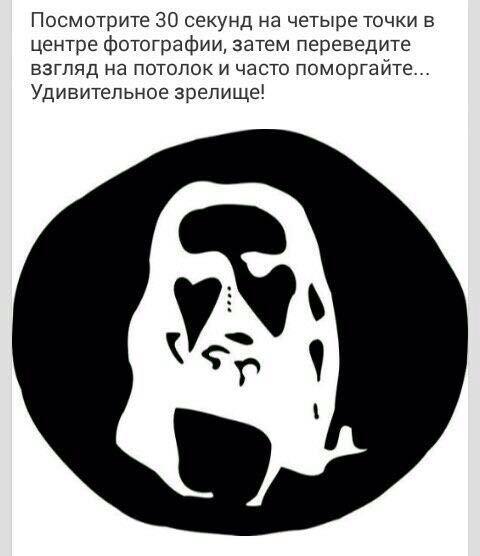 http://sa.uploads.ru/f6xew.jpg