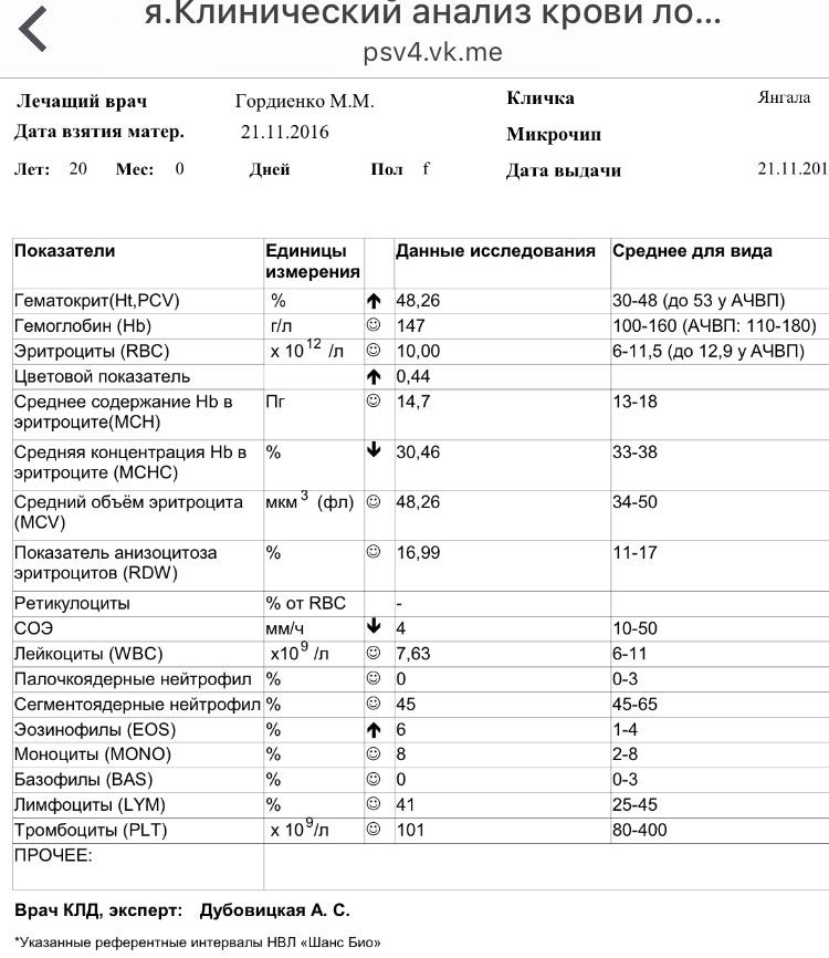 http://sa.uploads.ru/gWcPs.jpg