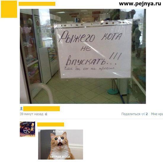 http://sa.uploads.ru/hZ17B.jpg