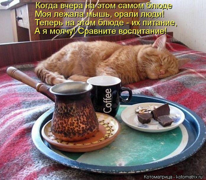 http://sa.uploads.ru/kjRU5.jpg