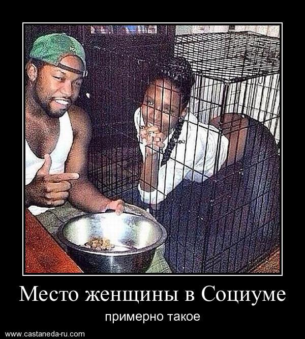 http://sa.uploads.ru/mqAjH.jpg