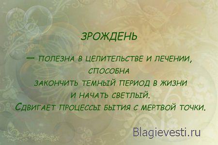 http://sa.uploads.ru/mzb8s.jpg