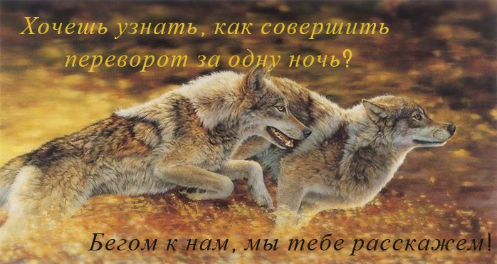 http://sa.uploads.ru/o5A3j.jpg