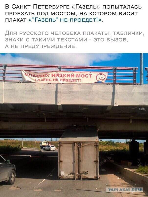 http://sa.uploads.ru/ptNA1.jpg