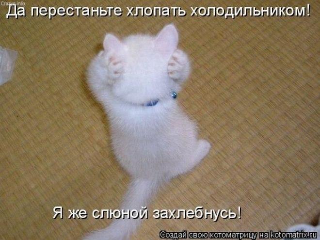 http://sa.uploads.ru/qR5VT.jpg