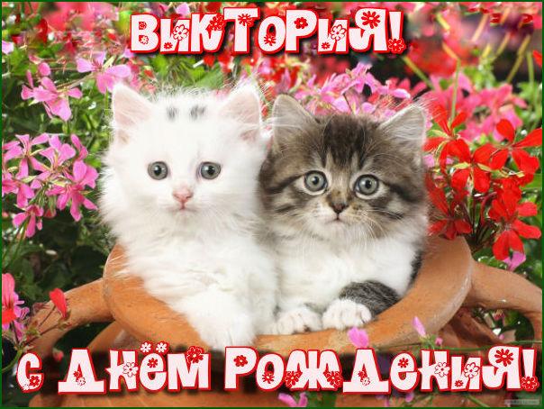 http://sa.uploads.ru/rW2e5.jpg