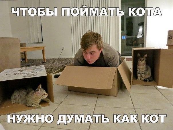 http://sa.uploads.ru/rhpVT.jpg