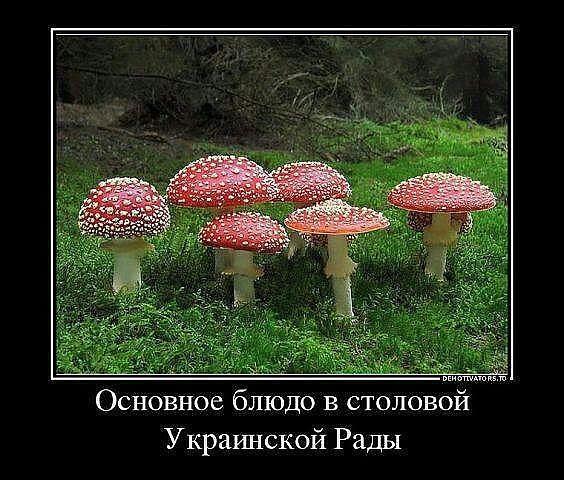 http://sa.uploads.ru/sOuSb.jpg