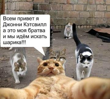 http://sa.uploads.ru/t/03ah5.jpg