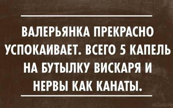 http://sa.uploads.ru/t/0KIqw.jpg