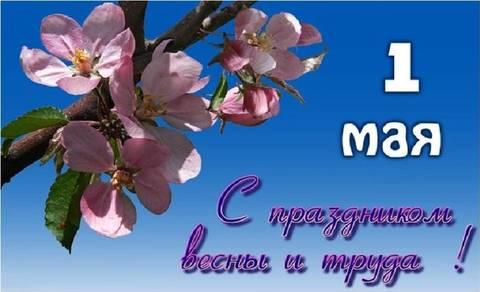 http://sa.uploads.ru/t/0lQSB.jpg