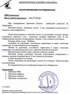 http://sa.uploads.ru/t/0zBMQ.png