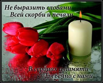 http://sa.uploads.ru/t/1Ip6c.jpg
