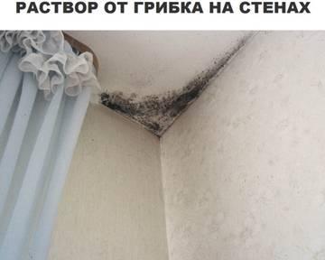 http://sa.uploads.ru/t/1NTp6.jpg