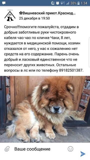 http://sa.uploads.ru/t/1w6oS.jpg
