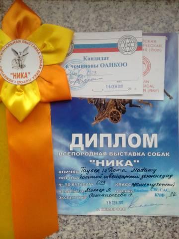 http://sa.uploads.ru/t/34sHl.jpg