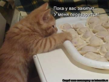 http://sa.uploads.ru/t/3VQDL.jpg