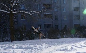 http://sa.uploads.ru/t/4b2oa.jpg