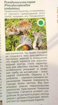 http://sa.uploads.ru/t/4vaeH.jpg
