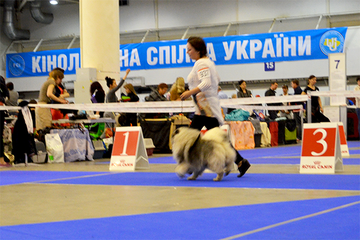 http://sa.uploads.ru/t/57DUT.png